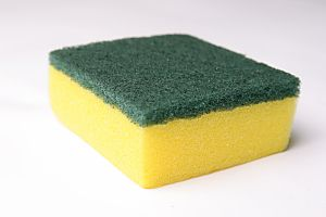 The easy way to sanitize your dirty sponge
